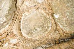 επιφάνεια πετρών παραλιών Στοκ φωτογραφίες με δικαίωμα ελεύθερης χρήσης