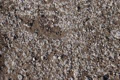 επιφάνεια πετρών ρύπου Στοκ φωτογραφίες με δικαίωμα ελεύθερης χρήσης