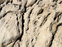 Επιφάνεια του βράχου Στοκ Εικόνα