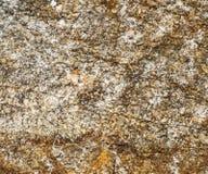 Επιφάνεια του γρανίτη σύσταση πετρών βράχου βρύου Χρωματισμένη τραχιά σύσταση πετρών γρανίτη Στοκ φωτογραφίες με δικαίωμα ελεύθερης χρήσης