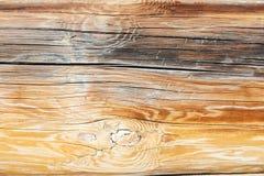 Επιφάνεια του παλαιού κούτσουρου Στοκ εικόνες με δικαίωμα ελεύθερης χρήσης