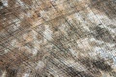 Επιφάνεια του τοίχου πετρών Στοκ Φωτογραφία