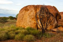 Επιφύλαξη συντήρησης Karlu Karlu μαρμάρων διαβόλων, Βόρεια Περιοχή, Αυστραλία στοκ εικόνες με δικαίωμα ελεύθερης χρήσης