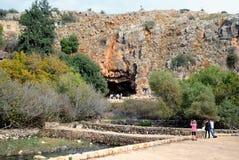 Επιφύλαξη φύσης ρευμάτων Hermon στο βόρειο Ισραήλ στοκ εικόνες