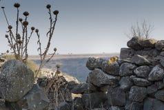 Επιφύλαξη φύσης του Ισραήλ Gamla Στοκ Φωτογραφίες
