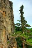 Επιφύλαξη φύσης Lazovsky Στοκ εικόνα με δικαίωμα ελεύθερης χρήσης