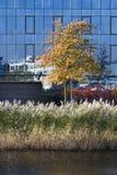 Επιχείρηση και περιβάλλον Στοκ εικόνα με δικαίωμα ελεύθερης χρήσης