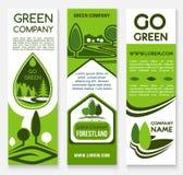 Επιχείρηση Eco, πράσινο πρότυπο εμβλημάτων επιχείρησης Στοκ Εικόνα