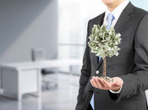 Επιχειρηματίας με ένα μικροσκοπικό δέντρο δολαρίων, γραφείο τρισδιάστατη απόδοση Στοκ Εικόνα