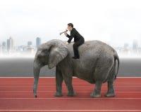 Επιχειρηματίας με τη χρησιμοποίηση του ομιλητή που οδηγά στο περπάτημα του ελέφαντα Στοκ Εικόνα