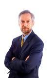 Επιχειρηματίας που απομονώνεται στο λευκό στοκ φωτογραφία με δικαίωμα ελεύθερης χρήσης