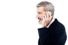 Επιχειρηματίας που μιλά στο τηλέφωνο πέρα από το λευκό Στοκ Εικόνες