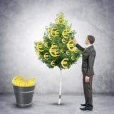 Επιχειρηματίας που συλλέγει τα ευρο- σημάδια από το δέντρο Στοκ εικόνες με δικαίωμα ελεύθερης χρήσης
