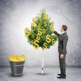 Επιχειρηματίας που συλλέγει τα σημάδια δολαρίων από το δέντρο Στοκ Εικόνες