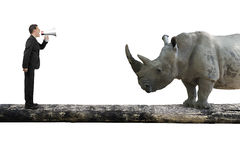 Επιχειρηματίας που χρησιμοποιεί να φωνάξει ομιλητών στο ρινόκερο ενιαίο σε ξύλινο Στοκ φωτογραφία με δικαίωμα ελεύθερης χρήσης