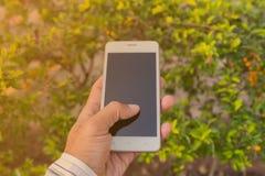 Επιχειρηματίας που χρησιμοποιεί το κινητό τηλέφωνό του υπαίθριο Στοκ φωτογραφίες με δικαίωμα ελεύθερης χρήσης