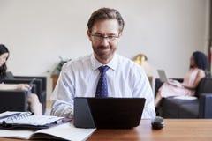 Επιχειρηματίας που χρησιμοποιεί το lap-top στο γραφείο, συνάδελφοι στο υπόβαθρο στοκ φωτογραφία
