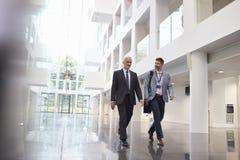 Επιχειρηματίες που μιλούν καθώς περπατούν μέσω του λόμπι γραφείων Στοκ εικόνα με δικαίωμα ελεύθερης χρήσης
