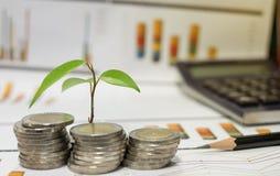 Επιχειρησιακή έννοια της παραγωγής των χρημάτων στην επένδυση Στοκ φωτογραφία με δικαίωμα ελεύθερης χρήσης