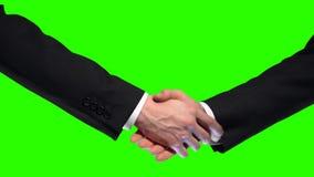 Επιχειρησιακή χειραψία στο πράσινο υπόβαθρο οθόνης, εμπιστοσύνη συνεργασίας, σημάδι σεβασμού απόθεμα βίντεο