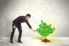 Επιχειρησιακό άτομο που ποτίζει ένα δέντρο σημαδιών δολαρίων ανάπτυξης πράσινο Στοκ Φωτογραφία