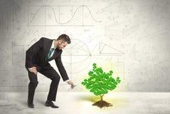 Επιχειρησιακό άτομο που ποτίζει ένα δέντρο σημαδιών δολαρίων ανάπτυξης πράσινο Στοκ Φωτογραφίες