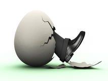 επιχειρησιακό αυγό Στοκ Εικόνες