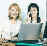 επιχειρησιακό lap-top δύο εργασία γυναικών Στοκ εικόνα με δικαίωμα ελεύθερης χρήσης