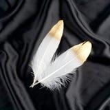 Επιχρυσωμένο πολυτέλεια χρυσό χρυσό άσπρο φτερό κύκνων στο μαύρο υπόβαθρο υφασμάτων μεταξιού Στοκ Φωτογραφίες