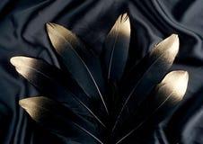 Επιχρυσωμένο πολυτέλεια χρυσό χρυσό μαύρο φτερό κύκνων στο υπόβαθρο υφασμάτων μεταξιού Στοκ εικόνα με δικαίωμα ελεύθερης χρήσης