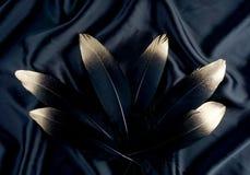 Επιχρυσωμένο πολυτέλεια χρυσό χρυσό μαύρο φτερό κύκνων στο υπόβαθρο υφασμάτων μεταξιού Στοκ φωτογραφία με δικαίωμα ελεύθερης χρήσης