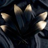 Επιχρυσωμένο πολυτέλεια χρυσό χρυσό μαύρο φτερό κύκνων στο υπόβαθρο υφασμάτων μεταξιού Στοκ Εικόνες