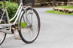 Επιλέξτε τα ποδήλατα εστίασης στο πάρκο Στοκ Φωτογραφία