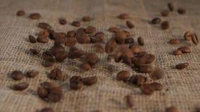 Επιλεγμένη burlap καφέ σιταριού ευώδης καφετιά πτώση να βρεθεί Κινηματογράφηση σε πρώτο πλάνο φιλμ μικρού μήκους