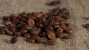 Επιλεγμένη burlap καφέ σιταριού ευώδης καφετιά πτώση να βρεθεί Κινηματογράφηση σε πρώτο πλάνο απόθεμα βίντεο