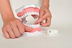 Επιδεικνύοντας πώς να χρησιμοποιήσει το νήμα, οδοντική έννοια προσοχής Στοκ εικόνες με δικαίωμα ελεύθερης χρήσης