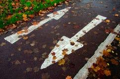 Επιλογές για τον επόμενο κύκλο Στοκ φωτογραφίες με δικαίωμα ελεύθερης χρήσης