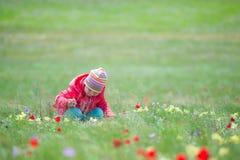 επιλογή λουλουδιών παιδιών Στοκ Εικόνες