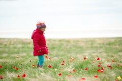 επιλογή λουλουδιών παιδιών Στοκ φωτογραφία με δικαίωμα ελεύθερης χρήσης