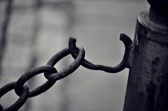 Επιλογή της ελευθερίας Στοκ Εικόνα