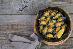 Επιλογή του γεύματος θαλασσινών στο ξύλινο υπόβαθρο Στοκ Φωτογραφίες