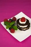 Επιδόρπιο σοκολάτας με την κτυπημένη κρέμα Στοκ φωτογραφίες με δικαίωμα ελεύθερης χρήσης