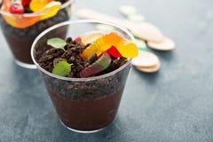 Επιδόρπιο σοκολάτας παιδιών σε έναν ρύπο και τα σκουλήκια φλυτζανιών Στοκ εικόνες με δικαίωμα ελεύθερης χρήσης