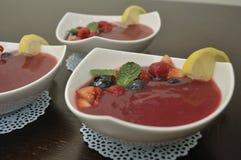 Επιδόρπιο σούπας φρούτων με τα μούρα και τη φέτα λεμονιών Στοκ φωτογραφίες με δικαίωμα ελεύθερης χρήσης