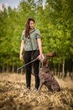 Εποχή κυνηγιού φθινοπώρου κυνήγι στοκ φωτογραφία