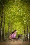 Εποχή κυνηγιού φθινοπώρου κυνήγι στοκ εικόνες