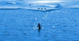 Εποχή λουσίματος τήξης Στοκ φωτογραφίες με δικαίωμα ελεύθερης χρήσης