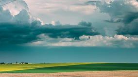 Εποχή τομέων οργώματος τρακτέρ την άνοιξη Αρχή της γεωργικής εποχής άνοιξης απόθεμα βίντεο