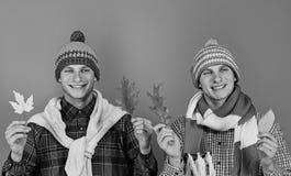 Εποχή φθινοπώρου και καιρική έννοια Οι τύποι πλέκουν μέσα τα μαντίλι στοκ φωτογραφία