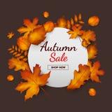 Εποχή φθινοπώρου προώθησης εμβλημάτων πώλησης στο σκοτεινό υπόβαθρο με τα μειωμένα φύλλα και το κείμενο Στοκ Εικόνες
